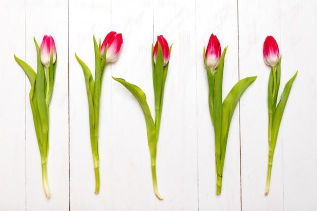 Rangée de tulipes sur fond en bois.