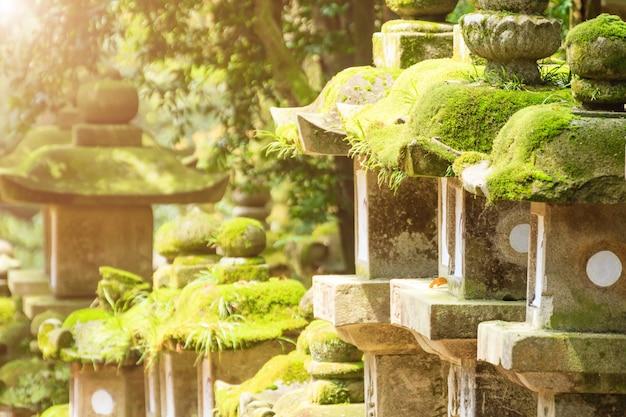 Rangées de lanternes anciennes en pierre, béton et bois recouvertes de mousse. parc nara, japon