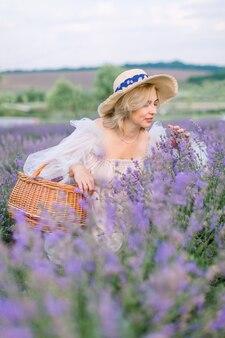 Rassembler des fleurs de lavande dans un sac en osier. jolie dame mûre dans un chapeau et une robe élégants, accroupie et appréciant le parfum de la lavande en fleurs