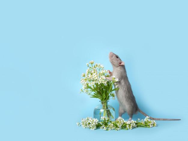 Un rat mignon se tient sur ses pattes arrière à côté de délicates fleurs sauvages sur fond bleu.