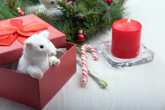 Rat regarde hors de la boîte rouge pour la nouvelle année