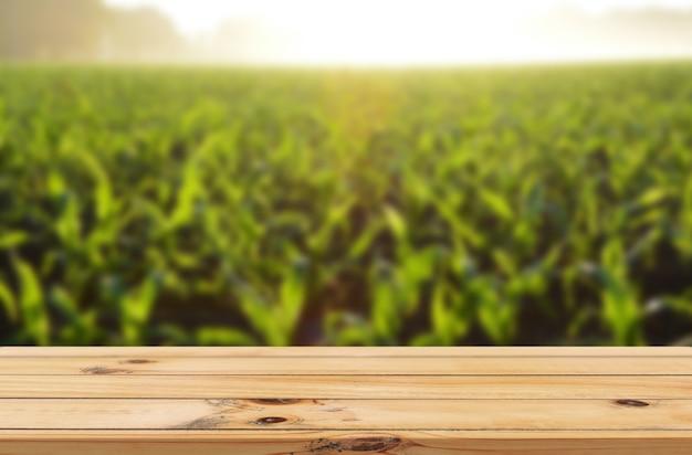 Rayons de soleil sur fond de ferme de feuilles vertes avec affichage de produits de table en bois