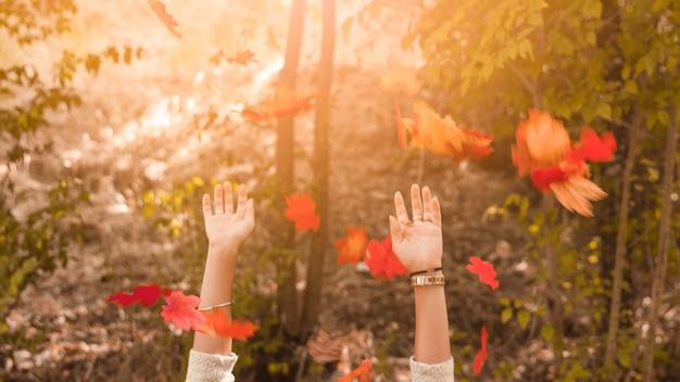 Recadrer les mains en jetant des feuilles d'automne