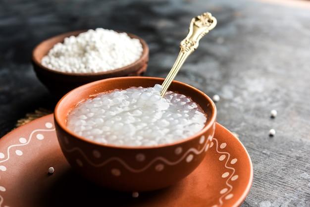 Recette de bouillie de sagou ou de sabudana pour bébés et tout-petits, servie dans un bol avec cuillère, mise au point sélective