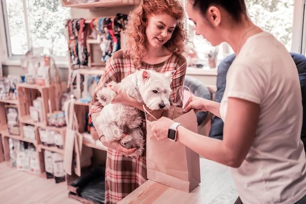 À la recherche dans le sac. chien blanc drôle regardant dans le sac tout en faisant des emplettes dans l'animalerie avec le propriétaire