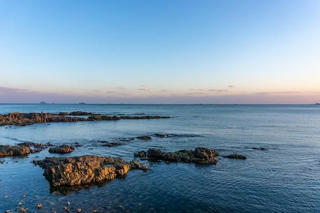 Récifs insulaires et bryophytes verts