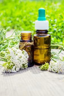 Récipient d'huile essentielle de millefeuille avec des fleurs de millefeuille sur fond de bois et de verdure