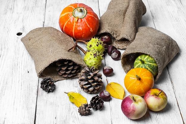 Récolte d'automne de fruits et légumes