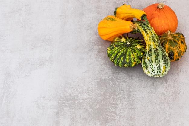 Récolte d'automne joyeux thanksgiving bannière sélection de diverses citrouilles