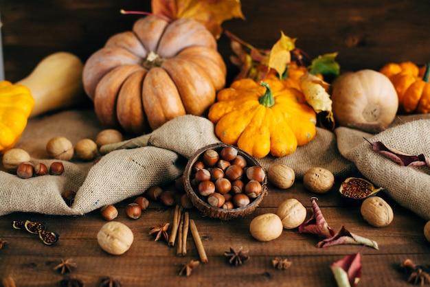 Récolte d'automne. noix, citrouilles, courges, épices.
