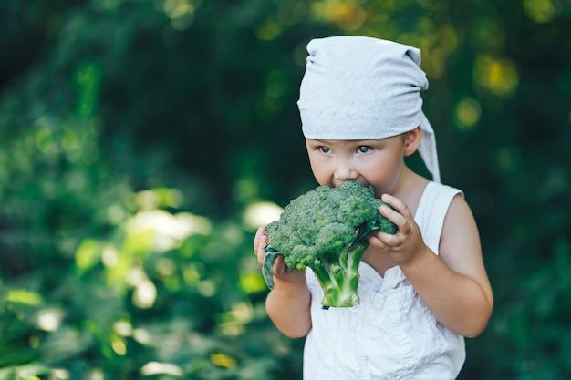 Récolte, automne, petit garçon de paysan dans une suite décontractée, manger du brocoli en plein air dans le jardin