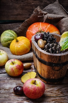 Récolte d'automne de pommes et de citrouilles