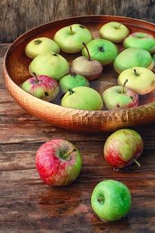 Récolte d'automne de pommes