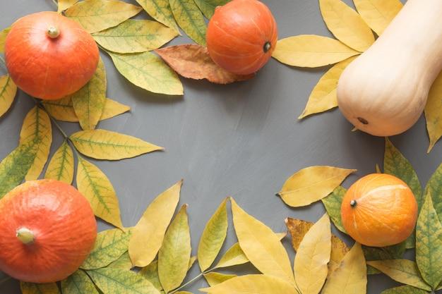 Récolte de citrouilles orange avec jaune feuilles d'automne sur une table en bois gris. cadre d'automne.
