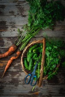 Récolte de concombres dans un panier, carottes fraîchement récoltées dans le sol sur fond en bois à l'extérieur