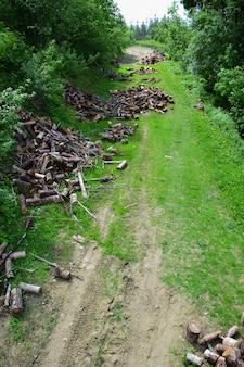 La récolte du bois est photographiée sous un angle élevé au-dessus d'une clairière où couper des bûches et du chanvre