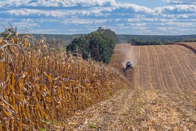 Récolte du maïs par une moissonneuse-batteuse, suivie du déchargement et du transport du grain.