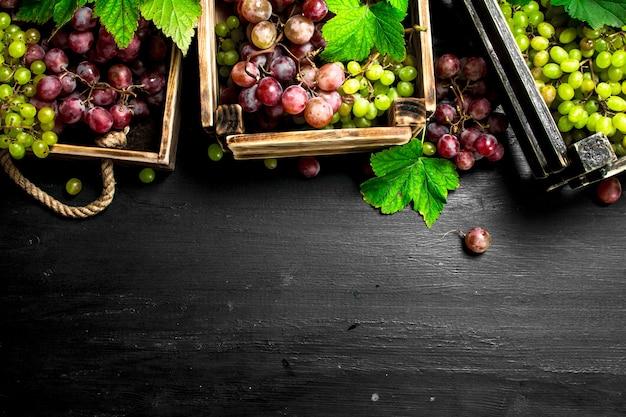 Récolte fraîche de raisins rouges et verts sur tableau noir.