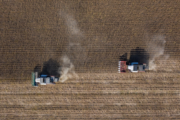 Récolte de graines de tournesol, vue aérienne