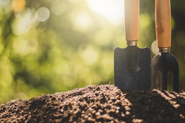 La récolte a lieu sur le sol et le soleil du matin brille.