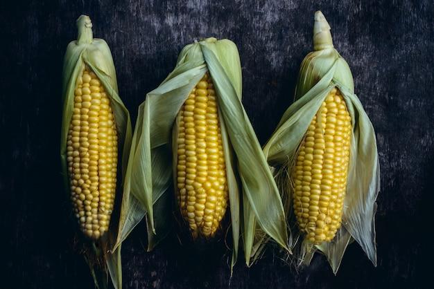 Récolte de maïs végétarien sur noir