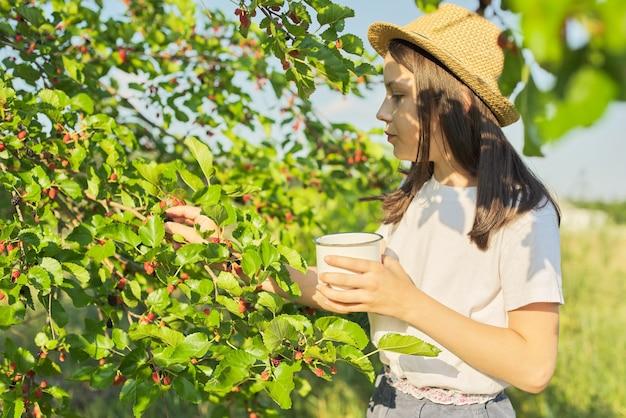 Récolte de mûres dans le jardin. petite fille déchirant des baies dans une tasse de mûrier, fond de journée ensoleillée d'été. nourriture saine de vitamine normale