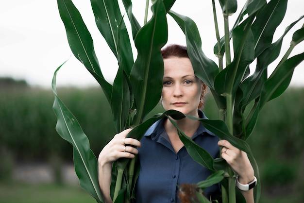 Récolte de nourriture de maïs, main de femme tenant la récolte sur le terrain