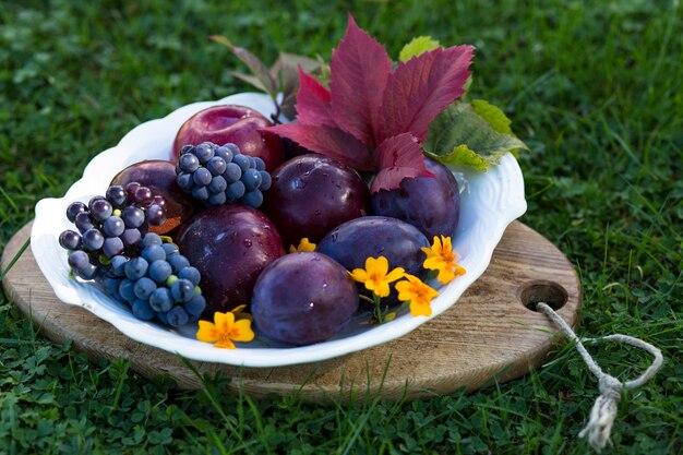 Une récolte de prunes et de raisins noirs dans le jardin à la fin de l'été
