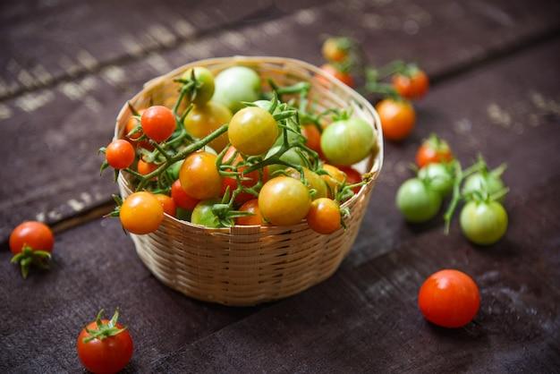 Récolte de tomates fraîches avec des tomates rouges vertes et mûres dans un panier en bois foncé