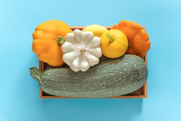 Récoltez différentes courges de légumes de couleur citrouille, courgettes, courges dans une boîte en bois sur fond bleu. vue de dessus mise à plat.