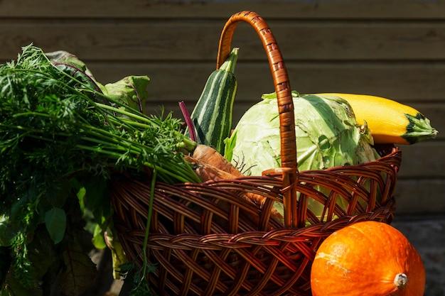 Récoltez des légumes frais dans un panier dans le jardin par une journée ensoleillée. alimentation saine et vitamines. fermer.