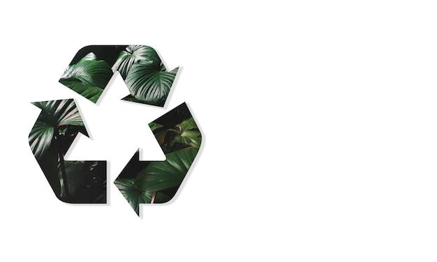 Recycler conservation de l'environnement nature écologie