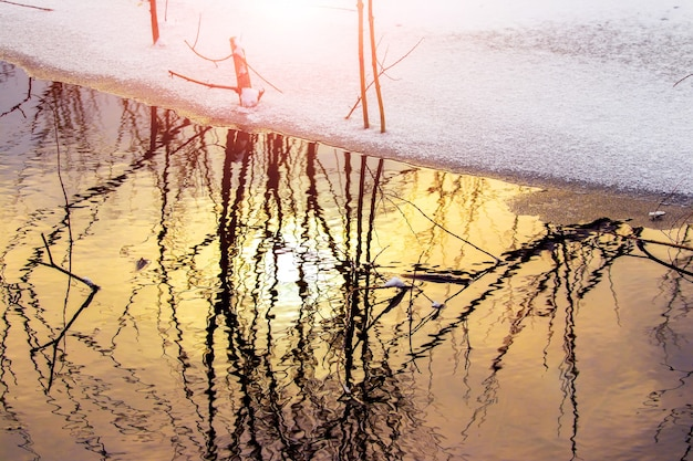 Reflet des arbres dans l'eau de la rivière en hiver au coucher du soleil, neige au bord de la rivière