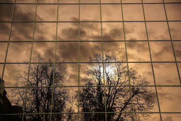 Reflet des arbres dans la vitre. vue moderne.