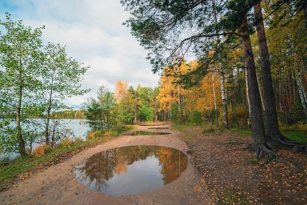 Le reflet dans la flaque d'eau. paysage d'automne.