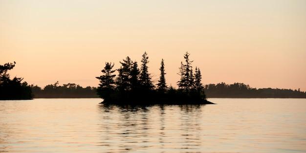 Réflexion d'arbres dans l'eau, lac des bois, ontario, canada