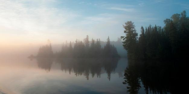 Réflexion d'arbres dans l'eau pendant le brouillard, lac des bois, ontario, canada
