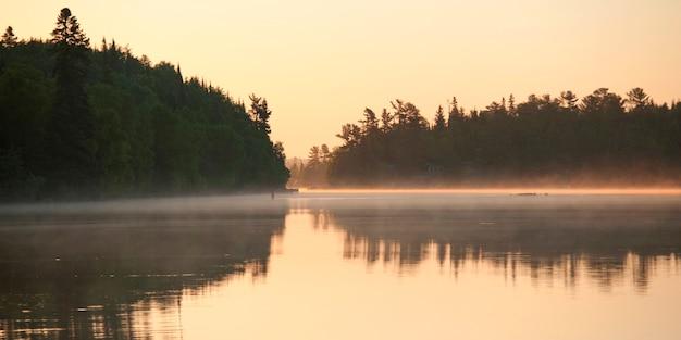 Réflexion d'arbres dans un lac, lac des bois, ontario, canada