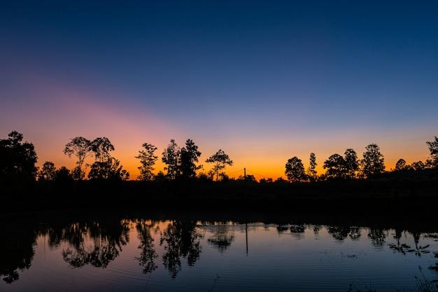 Réflexion dans le petit étang de la forêt au lever du soleil avec la belle lumière orange