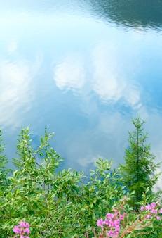 Réflexions dans l'eau du lac de montagne vidra