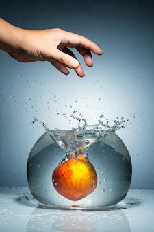 Relâchez une pomme de la main dans le bocal à poisson avec des éclaboussures d'eau.
