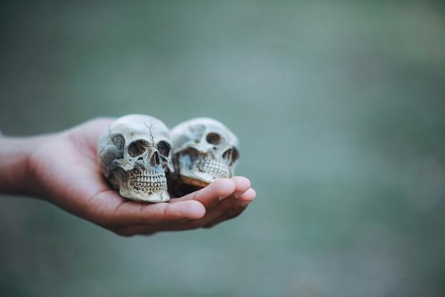 Remettre le crâne sur halloween