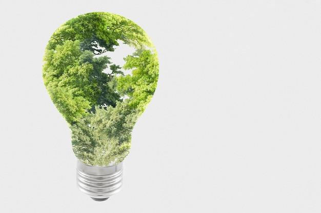 Remix de médias d'ampoule d'arbre de campagne d'énergie durable