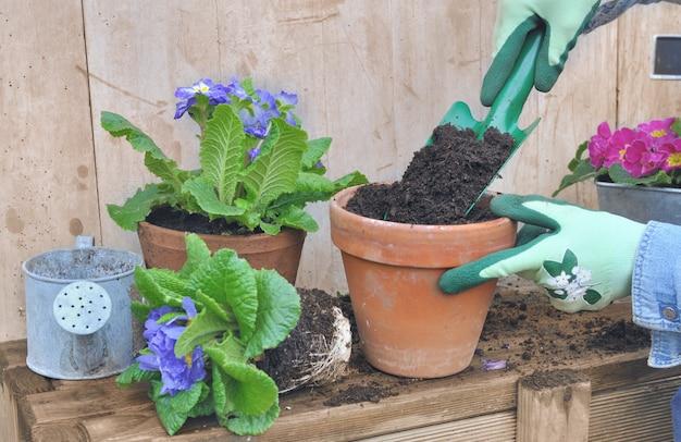 Remplir un pot de fleur