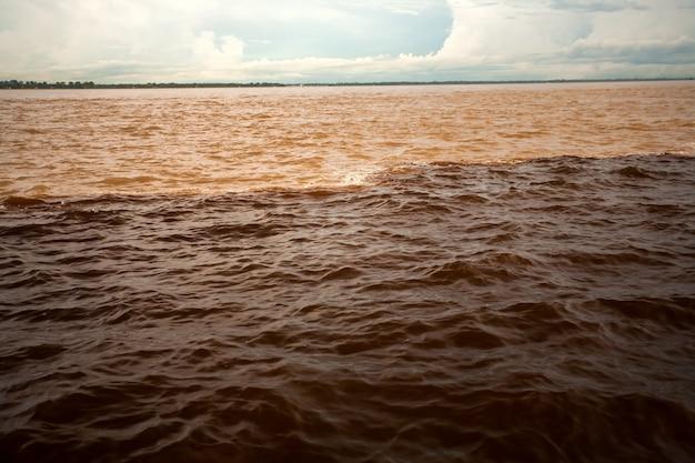 Rencontre aquatique de différentes couleurs - rivière black and solimoes - manaus - amazon