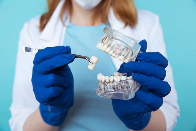 Rendez-vous chez le dentiste, instruments de dentisterie et concept de contrôle d'hygiéniste dentaire avec modèle de dents