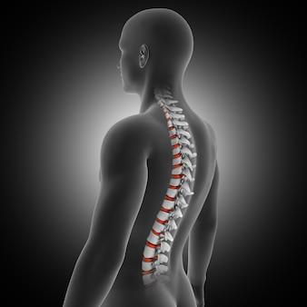 Rendu 3d d'un fond médical avec figure masculine avec colonne vertébrale et disques en surbrillance
