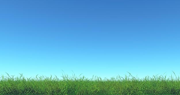 Rendu 3d de l'herbe verte et du ciel bleu