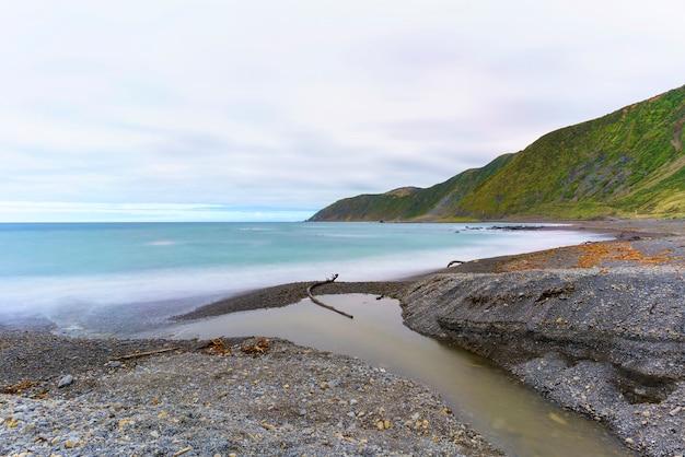 La réserve de te kopahou est située à owhiro bay où les gens peuvent profiter de la marche, du vélo et de la conduite de véhicules 4x4 le long de la côte, wellington, île du nord de la nouvelle-zélande
