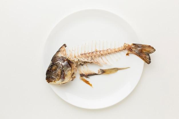 Restes de poisson cuit dans une assiette blanche
